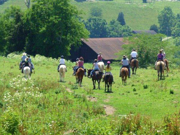 Deer Run Stable Trail Riding Kentucky