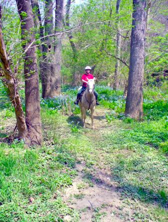 brandywine-delaware-horseback