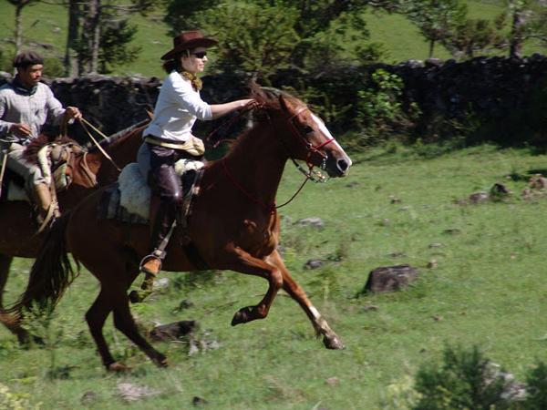 brazil gallop horse riding