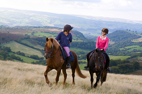 Brecon Beacons National Park Horseback Riding