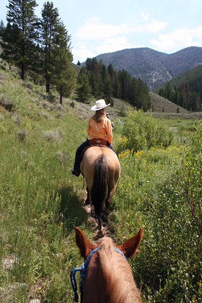 Bridger Teton Wyoming horseback