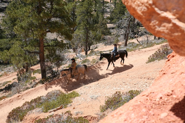Bryce Canyon horse riding