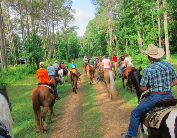 Buffalo River Group Trail Ride Tennessee