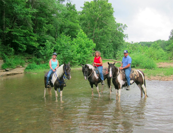 Buffalo River Trail Rides Tennessee