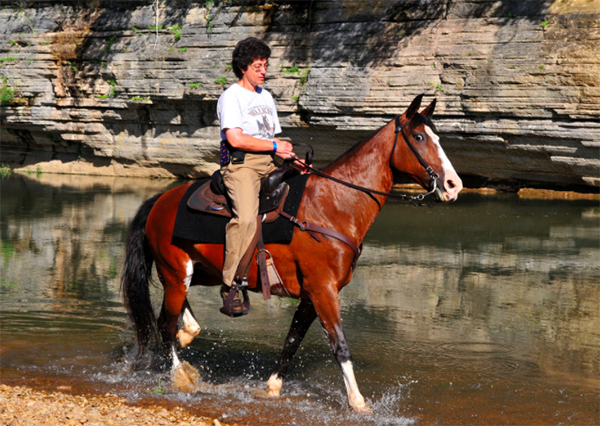Buffalo River Trail Riding Tennessee Horseback