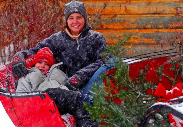 c lazy u winter sleigh