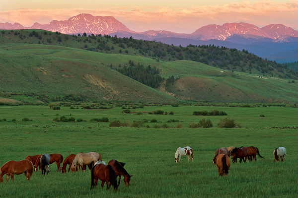 C Lazy U Ranch colorado dude ranches