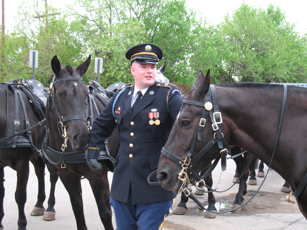 Caisson Horses with Soldier Old Guard