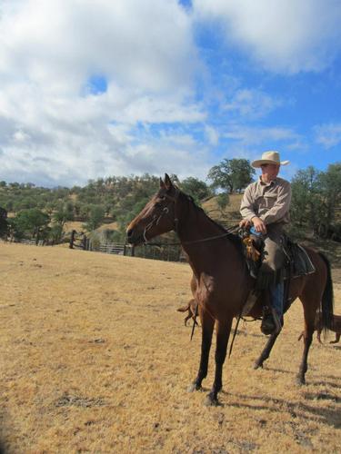 rankin ranch california cowboy