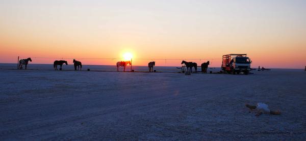 camp sunrise botswana