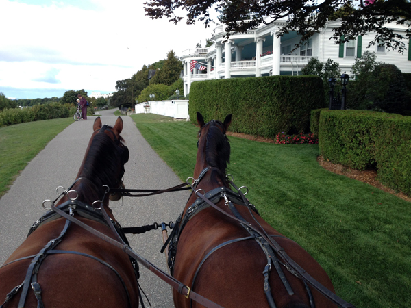 hackney horses Mackinac