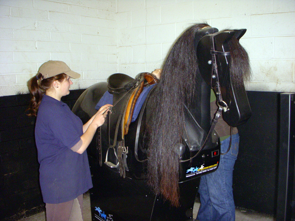 castle leslie mechanical horse
