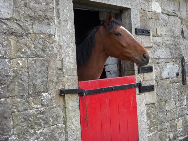 Castle Leslie old stables