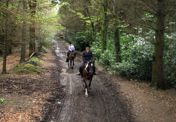 castle leslie estate trail riding