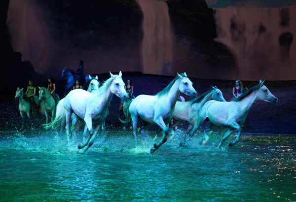 Finale Arabians in Liberty Francois Bergeron