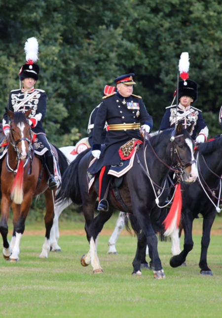 bay horse in cavalry uniform united kingdom