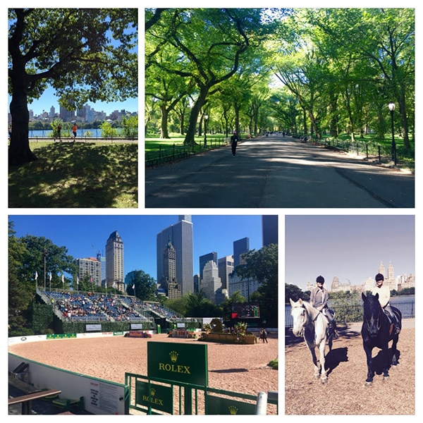 Central Park Horse Show NYC
