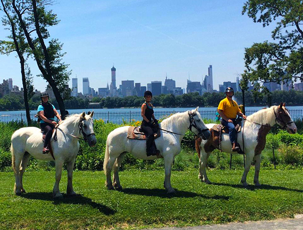 Central Park Sightseeing Offering Horseback Riding in Central Park ...