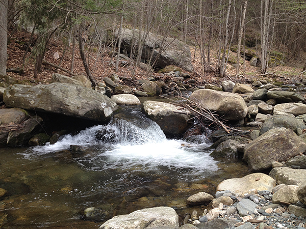 sanderson brook ar chester blandford state forest in massachusetts