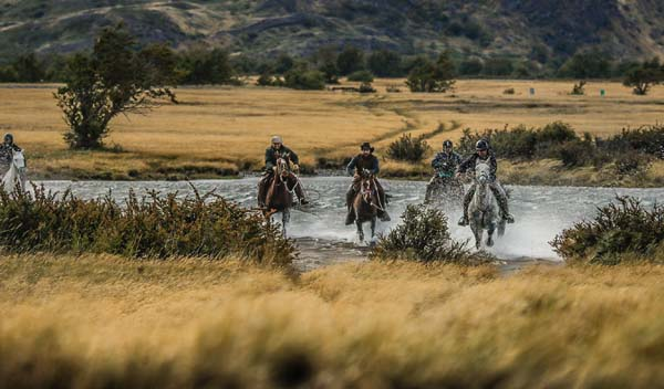 Galloping Through Pampas in Chile