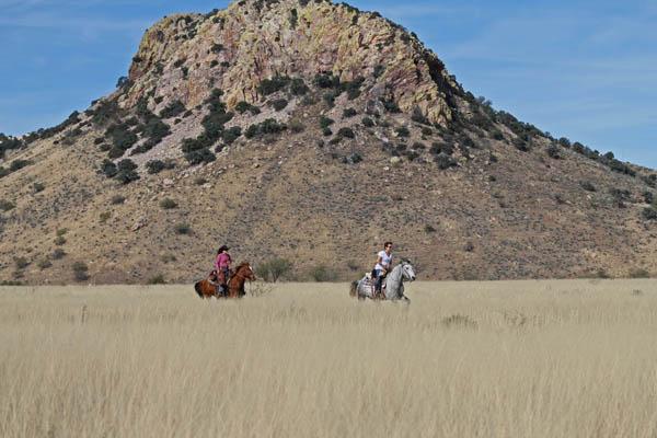 Circle Z Horseback Loping Ride