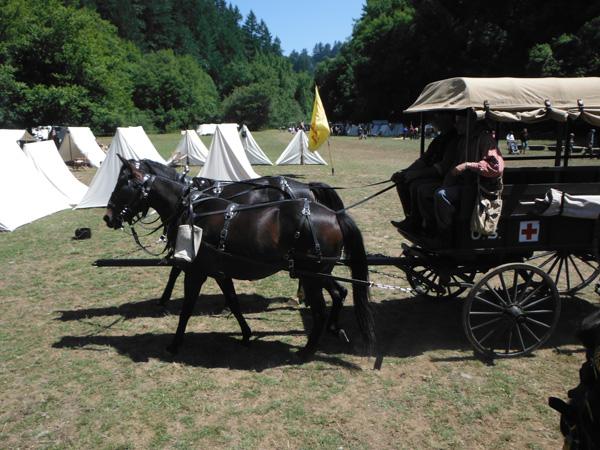 CHAS Civil War Days reenactment horse ambulance