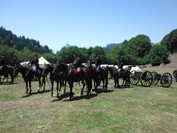 CHAS Civil War Days reenactment artillery horses
