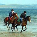 clew bay horseback riding wild atlantic way ireland