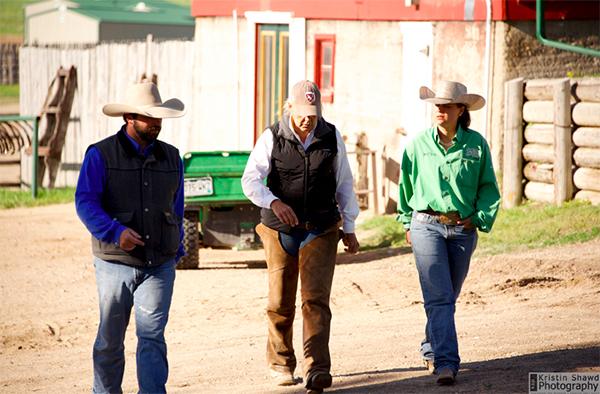 Colorado cattle company wranglers