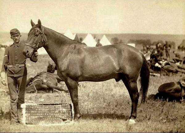 Comanche Survivor of Battle of Little Bighorn