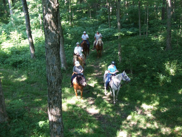Competitive Mounted Orienteering Horse Riding