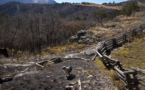 horseback riding nm trails in lincoln