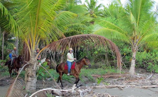 costa rica horse tour