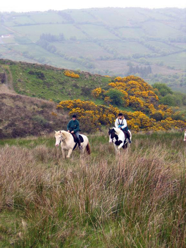 county clare horse riding vacations