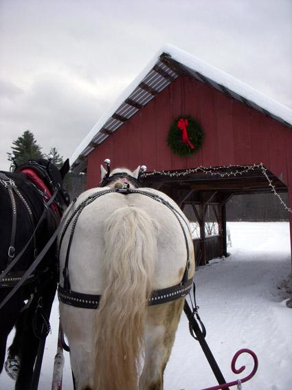 covered bridge vermont horses