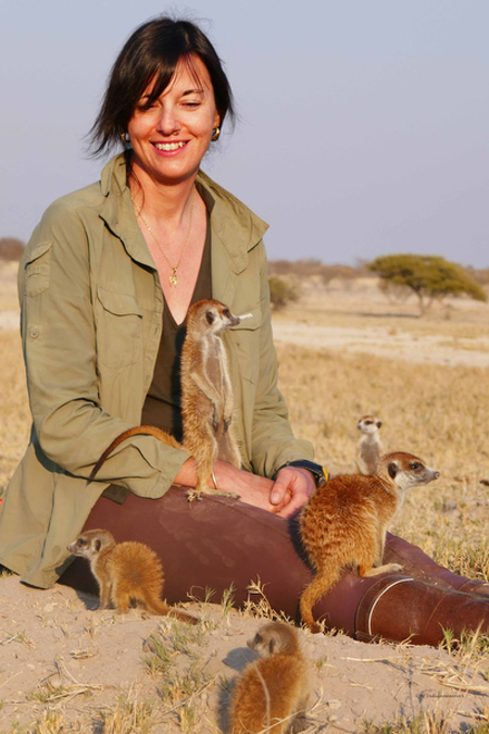 janine whyte crawls with the meerkats in botswana