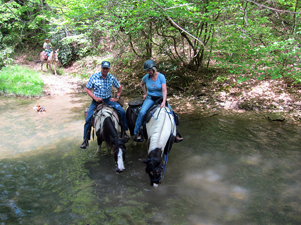 Creek Crossing WV horseback