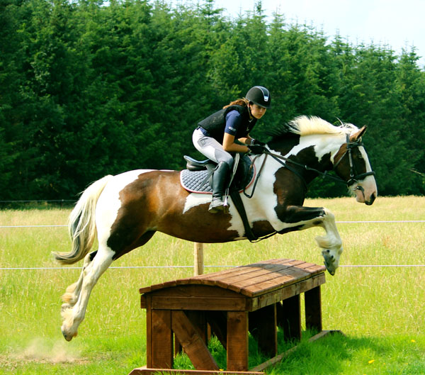 Crossogue Equestrian Centre Cross Country Jumping