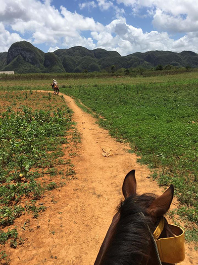 Cuba horseback riding Vinales