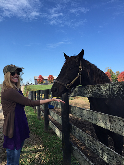 darley at old friends farm kentucky