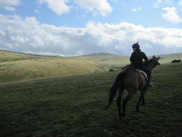 dartmoor riding holidays uk england