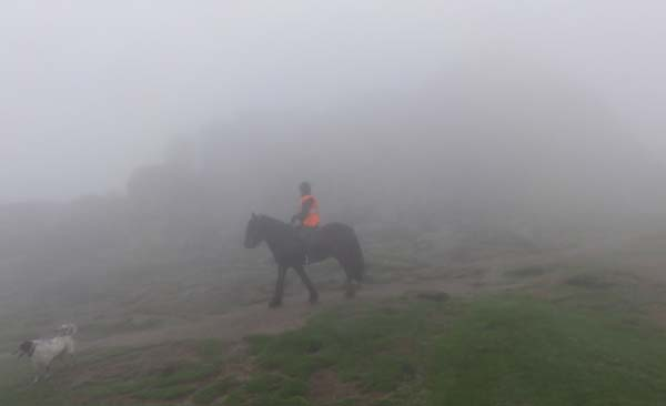 Dartmoor horse riding