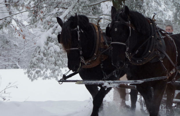 Mountain Top Resort offers sleigh rides