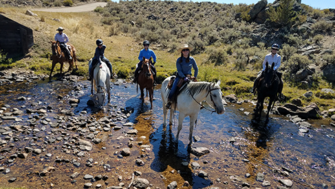 Blue Sky Sage Horseback Adventures- Wyoming riding vacations