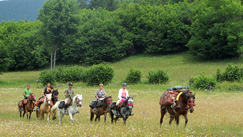 Carpathian Mountains Equestrian Vacations