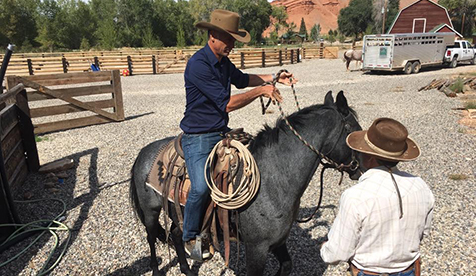 Trapper Creek Ranch Wyoming Horseback Riding
