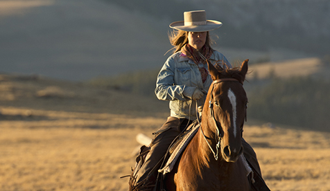 Trapper Creek Ranch Natural Horsemanship Wyoming