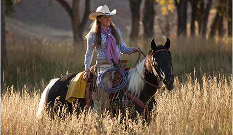 Trapper Creek Ranch Natural Horse Holidays Wyoming