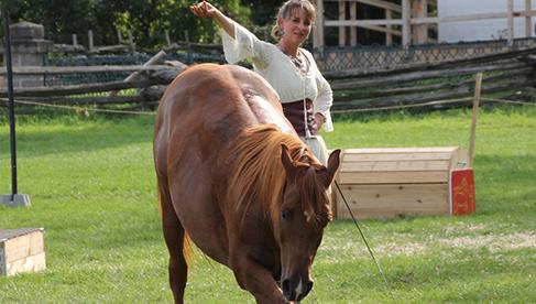 Trapper Creek Ranch Horseback Holidays Wyoming