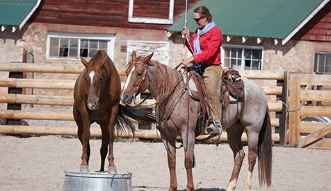 Trapper Creek Ranch Horseback Riding Vacations Wyoming